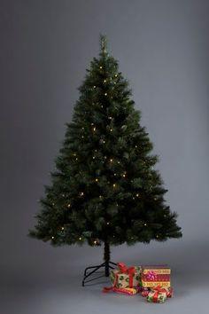 200 LED Woodland Pine 6ft Christmas Tree
