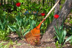 Save 20% off all remaining in-stock long handle garden tools at your nearest Central!