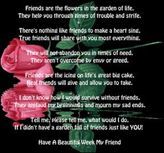Friends are Flowers in the Garden of Life...