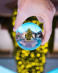 """""""Have yourself a merry little Christmas Let your heart be light From now on Our troubles will be out of sight"""" #arthard   #lensball #christmas #christmastime #christmastree #fineartphotography #finearephotographer #conceptualphotography #fineartportrait #artisticphotography #emotive #artisoninstagram #capturedconcepts #visualsoflife #l0tsabraids  #pixel_ig #marvelshot #whyconcept #visualcreators #visualsgang #getlost #explorer #livefolk #neverstopexploring #artistfound #thevisualvogue #goya…"""