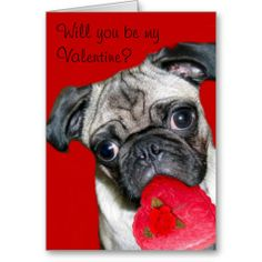 Will you be my Valentine pug greeting card