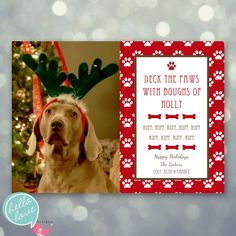 photo christmas card deck the paws dog pet holiday - Pet Holiday Cards