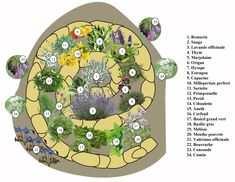 Discover recipes, home ideas, style inspiration and other ideas to try. Permaculture Design, Permaculture Farming, Herb Spiral, Spiral Garden, Herb Garden Design, Small Garden Design, Mandala Garden, Bamboo House Design, Principles Of Art