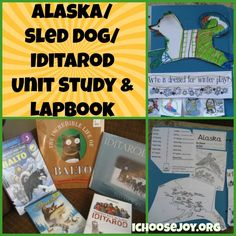 How we did a Iditarod unit study and lapbook on sled dogs, Alaska, and the Iditarod.