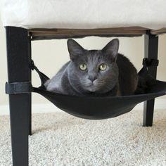 #BUY: Cat Crib ($29) #cats