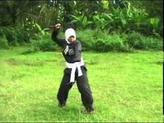 Pencak Silat Persaudaraan Setia Hati Terate adalah perguruan pencak silat tertua di indonesia dan banyak meraih prestasi
