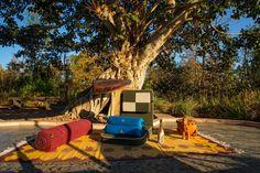Kanha safari package