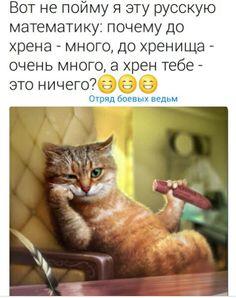 Подборка картинок))))#74 | Блог Михаил Дмитриев | КОНТ