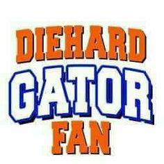 340 University Of Florida Ideas Gator University Of Florida Gator Nation