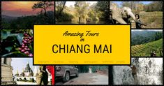 In this article, amazing tours in Chiang Mai, we share our experience about the tours we had with the local guide Tony and help you decide what tour to book Northern Thailand, Chiang Mai, Tour Guide, Waterfalls, Us Travel, The Locals, Elephants, Remote, Waiting