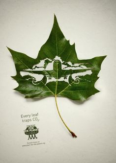leaves working to save the planet 1