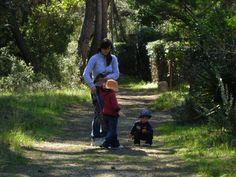 In pineta con la mamma per scoprire la natura
