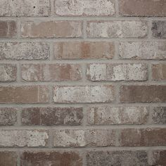 Shop Old Mill Thin Brick Systems Colonial 2.25-in x 7.625-in Rushmore Individual Piece Brick Veneer at Lowes.com