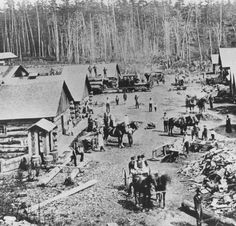 Lumbering Michigan history August 29 1986 Detroit News  lumber camps like this one sprouted and grew into towns