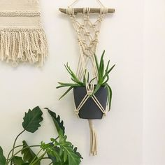 New plant hanger on the wall made by yours truly - now off to the U.K. to deliver a special weaving to my Great Aunt  . . . . . #macrame #modernmacrame #handcrafted #boho #naturalfibers