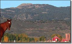 Google Image Result for http://www.sangres.com/dimages/colorado/places/larimercty/horsetoothmountain.gif