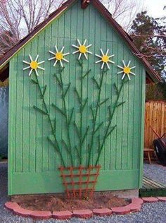 Cute trellis on garden shed. #shedlandscaping