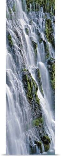 Poster Print Wall Art Print entitled Waterfall in a forest, Burney Falls, McArthur-Burney Falls Memorial State Park, California, None