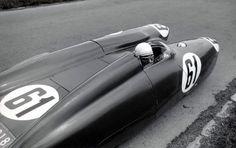 Bisiluro - 1955