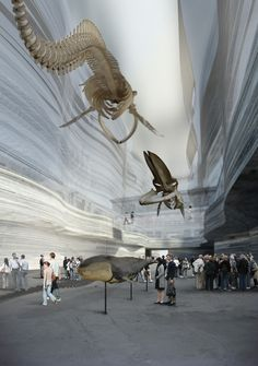 The New Natural History Museum, Cph