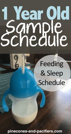 1 Year Old Schedule - Pinecones and Pacifiers. Baby feeding schedule and nap schedule for months! Baby Feeding Schedule, Baby Schedule, Toddler Schedule, Sleep Schedule, 1 Year Old Meals, One Year Old, 1 Year Old Food, 1 Year Old Meal Ideas, 1 Year Baby Food