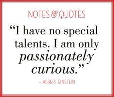 Notes & Quotes: Curiosity with Albert Einstein