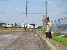 【御田植】平成24年5月26日、伝統的稲作行事『御田植』(主催・巴会)にて。お田植に先駆けて行われた神事の様子③です。斎主による散饌散供の儀(さんせんさんくのぎ)です。
