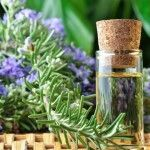 Best ways to use rosemary oil for hair growth. Top rosemary oil uses and benefits. Simple rosemary recipes for hair care. How to use rosemary oil for hair? Huile Tea Tree, Tea Tree Oil, Essential Oils For Hair, Essential Oil Uses, Pure Essential, Natural Hair Growth Treatment, Rosemary Oil For Hair, Rosemary Herb, Increase Memory