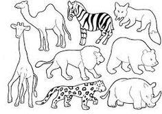 Resultado de imagem para animais selvagens para colorir