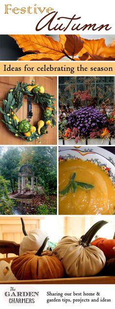 Festive Autumn ~ Ideas, recipes, and tutorials for celebrating the season!