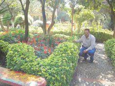 Raed Al-fatlwi