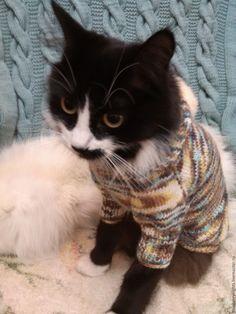 """Купить Теплый свитерок с капюшоном """" Шарм"""" - комбинированный, шерсть, меланжевая пряжа, маленькая собачка"""