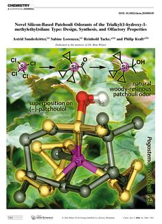 Novel Silicon‐Based Patchouli Odorants of the Type: Design, Synthesis, and Olfactory Properties Cover Pics, Type Design, Novels, Base, Abstract, Summary, Print Design, Fiction, Romance Novels
