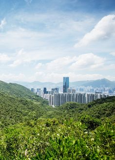 Hong Kong isn't all skyscrapers—most of its land is actually covered by parks, beaches, and hiking trails.