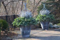 winter sparkle (17) - Dirt Simple blog by Deborah Silver