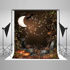 Photography Backdrops Moon Night Cat Bats for Halloween Party Photo Booth Props Cotton Halloween Backdrop, Halloween Party, Photo Booth Props, Photography Backdrops, Tapestry, Night, Cats, Nature, Amazon Fba