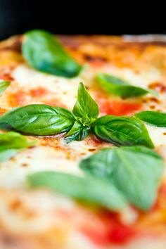 Pizza Margherita - it's what's for dinner! (even using fresh basil from the yard)