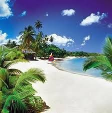 St. Lucia this lil island is an under rated gem in the carribean