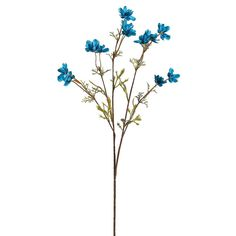 Baby cosmos wildflower spray in turquoise is a great filler flower in your floral designs for adding a splash of color. Measures 26 inches tall and includes 12 flowers that measure 1.5 inches in diame