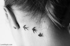Small bird tattoos behind ear.