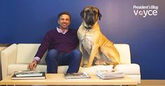 Pack Buddy - Google+  10 Tips to Prevent Dog Bites