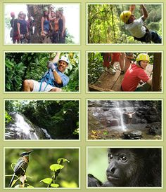 Costa Rica Canopy Tours | OSA Costa Rica Canopy Tour