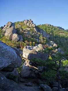Shenandoah National Park, VA , Old Rag Mountain Hike. 8 miles. The most popular hikes in the Mid-Atlantic region.