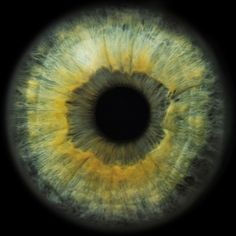 Eyescapes series (macro photography of human eyes) by Rankin