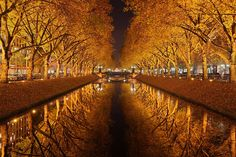 Golden October Jaros Lawm \ #reflections of #autumn trees in a #canal