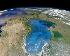 Coccolithophores (Phytoplankton, shown here as the white streaks in the Black Sea) actually remove a significant fraction of Earth's atmospheric carbon dioxide, bolstering the breathability of air for animals including humans.