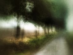 Sentinels by Sarah Jarrett, via Flickr