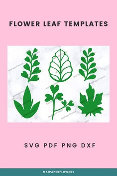 These paper flower leaves templates are printable and machine cutting, great for your big paper flowers crafts at affordable cost! #paperflowerleaves #paperflowerleavestemplate #leavestemplate #leavestemplatesvg #bigpaperflowers #paperflowerscraft #paperflowerleaftemplate #leaftemplateprintable #leaftemplatesvg #paperflowerleaftemplate #paperflowersdiy Big Paper Flowers, Giant Paper Flowers, Large Flowers, Leaf Template Printable, Paper Leaves, Leaves Vector, Flower Stands, Flower Crafts, My Flower