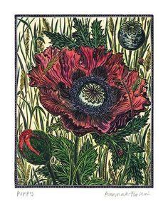 'Poppy' by Hannah Firmin