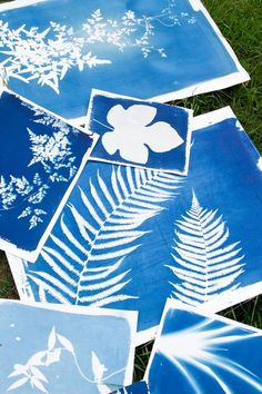 How to make Sun prints from any object in your home (or yard)-- How fun! Must try for my gallery wall! Rinne Allen | Food52 #cyanotype #sunprint #DIY